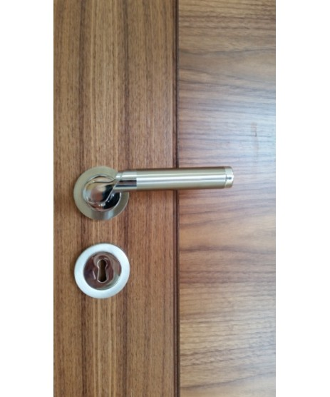 Fortessa Olympia Lever on Rose Door Handle