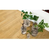 Pergo Vinyl Natural Highland Oak Plank
